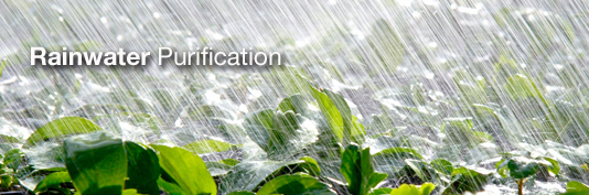 rainwater Purification
